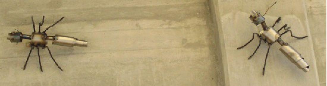 afghansk mynde til salgs goedkope opdek binnendeuren met glas